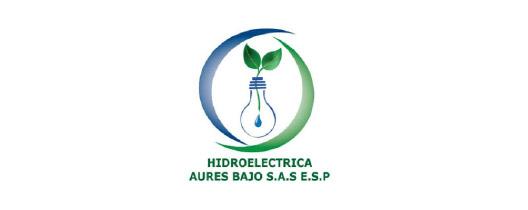Hidroelectrica aures bajo
